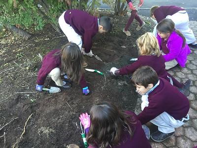 Second Grade Gardeners