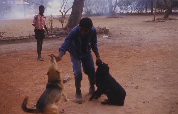 mann med hunder.jpg