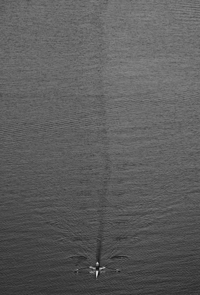 Ruderboot auf der Binnenalster am Tag in Schwarzweiß