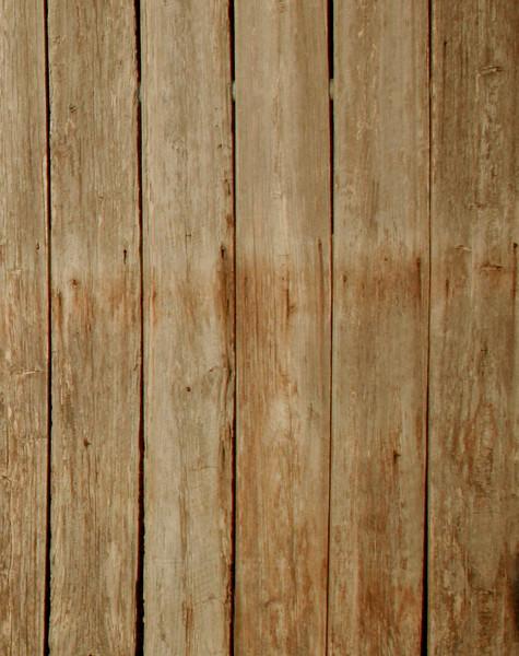 wooden backdrop.jpg