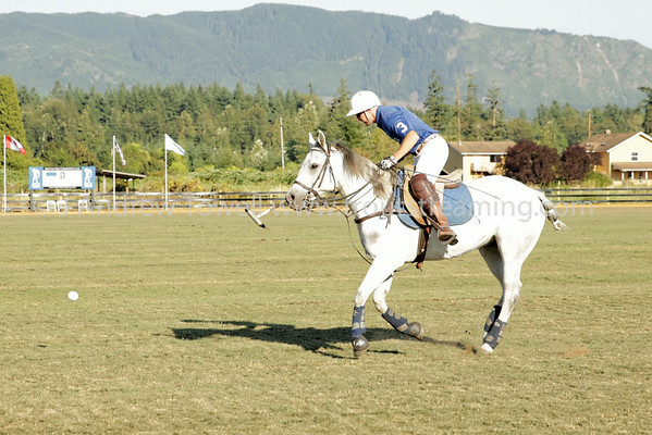 Seattle Polo Club