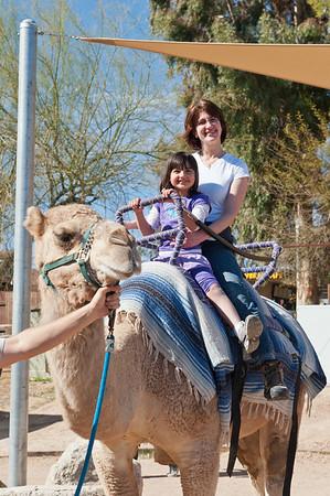 2013 Trip to Sedona and Tucson
