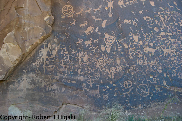 Newspaper Rock- petroglyphs