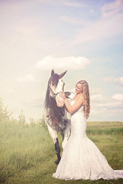 2015 Equine Bridal