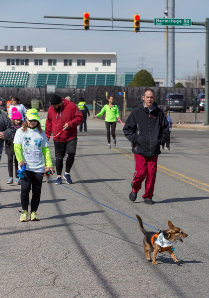 Richmond Spca Dog Jog 2018-707.jpg