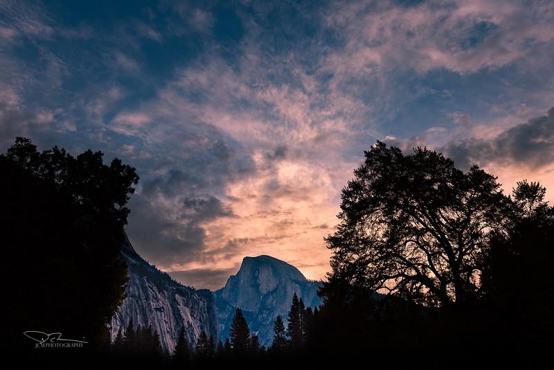 Sunrise Half Dome/Cooks Meadow Elm Tree