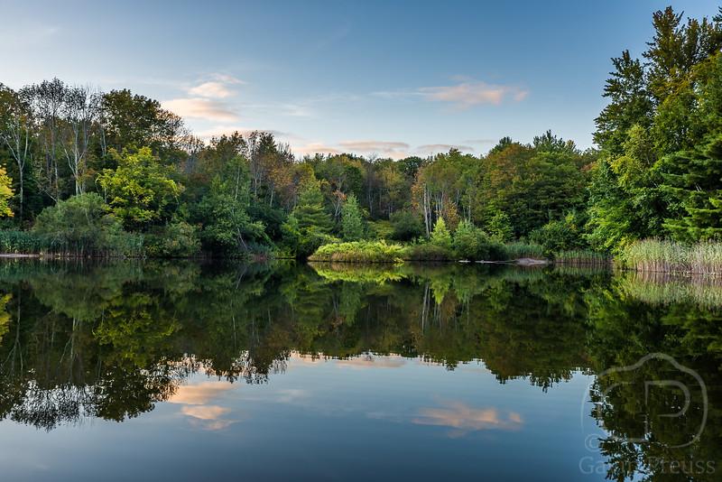 Pond-1210.jpg