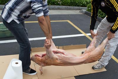 Pig Roast 07/16/11