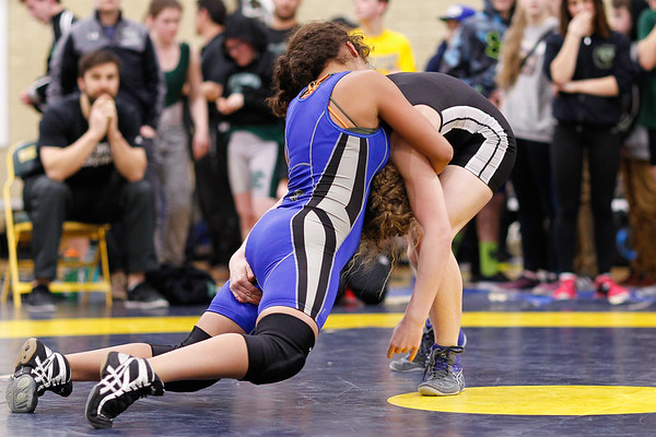 Wrestling | Rugby | Soccer | Other Sports