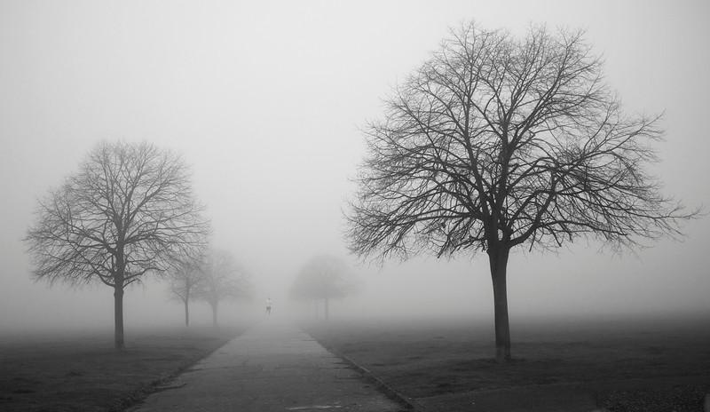 Fog Jog.B&W.jpg