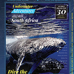 200x285-newsletter-handbook-cover-south-africa.png