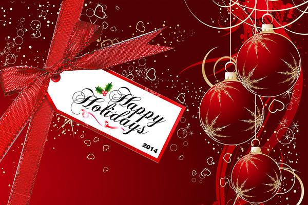 Cytec Holiday Photobooth 2014