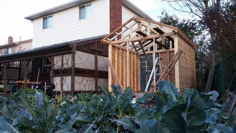 2015-Nov&Dec: 10ft x 10ft Shed Build