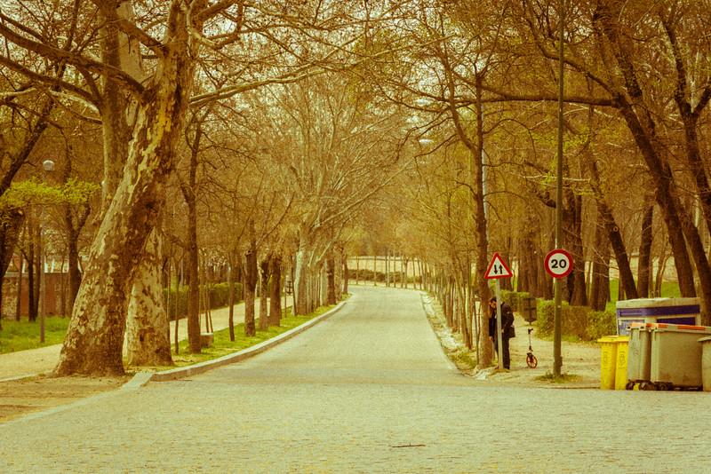 Madrid_March_2015-204.jpg