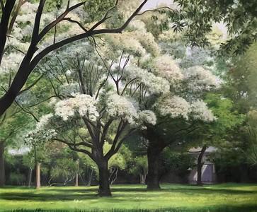2021 ALL Landscape Exhibition