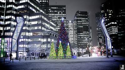 Vancouver Tree Lighting