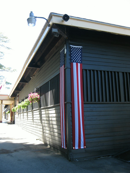 Patriotic bunting.