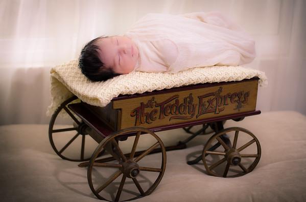 Newborn & Toddler Portraits