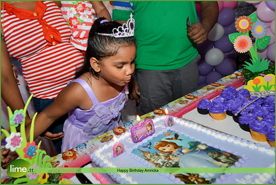 Happy Birthday Amricka