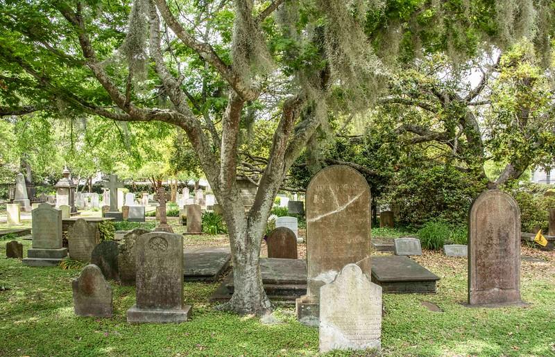 Charleston_Cemetery-7.jpg