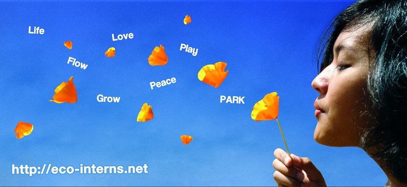 2012, Life Flow Love Grow