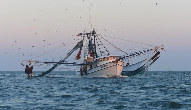 MMGINC Shrimp Boat Charleston Harbor_4.jpg