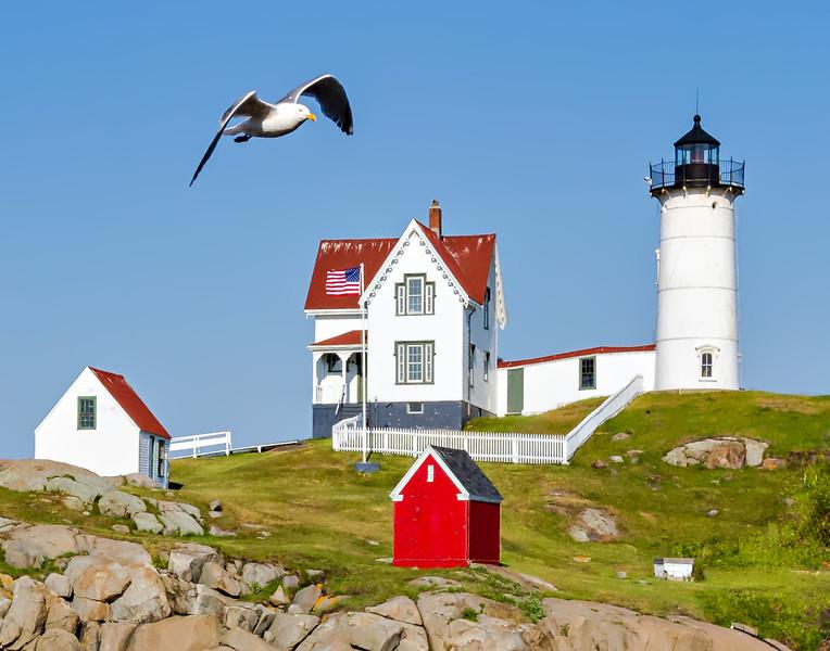j Nubble light seagull lighthouse.jpg