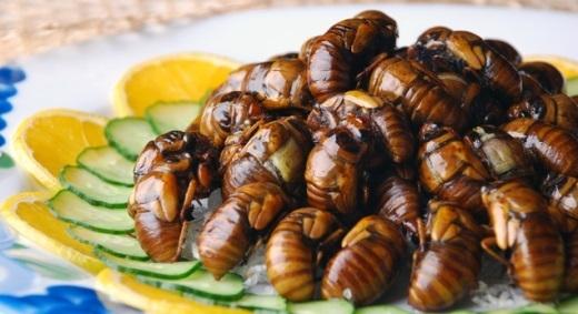 Ấu trùng ong ngào đường