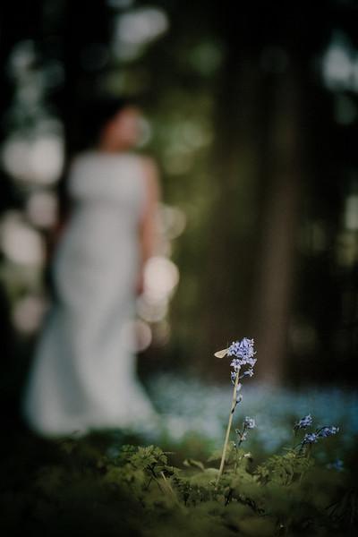 The Wedding of Nicola and Simon505.jpg