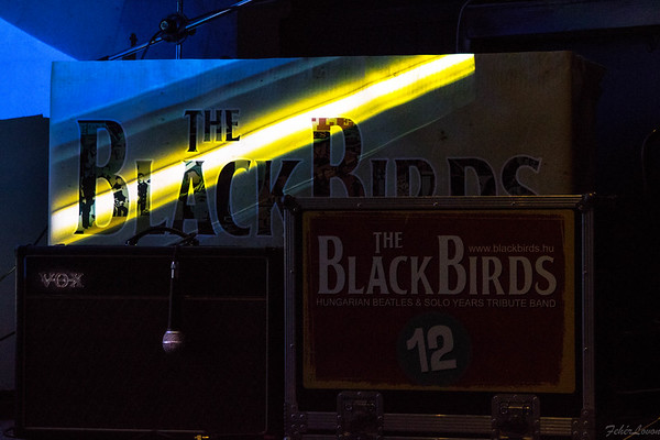 BlackBirds - 2016.11.11