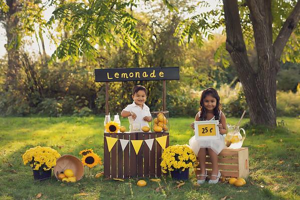 Lemonade Minis