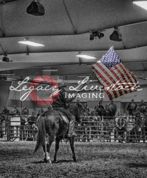 2014 Nebraska Cattlemen's Classic
