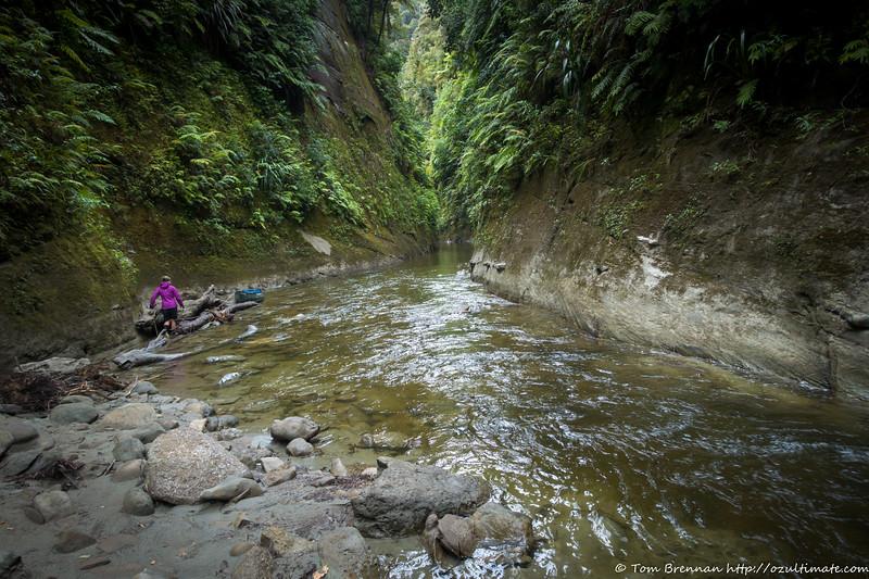 Mangaio Stream