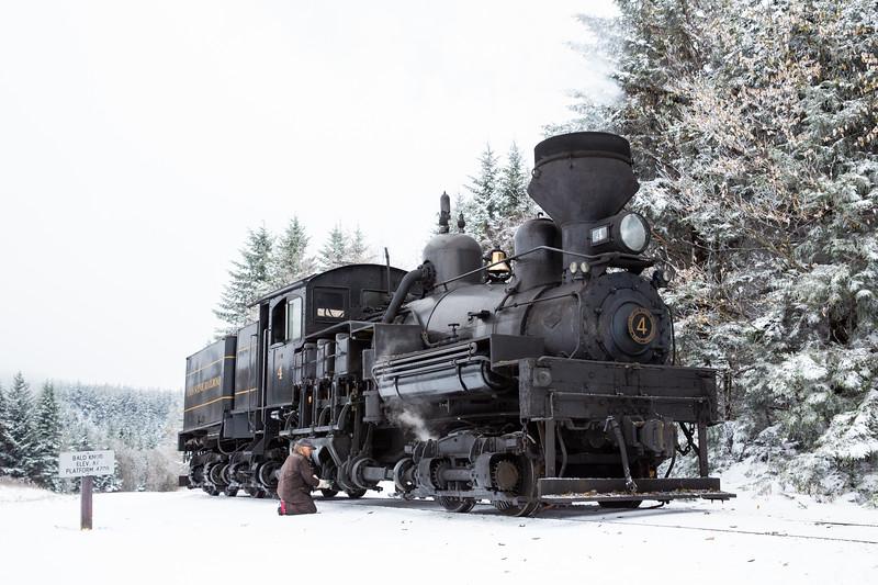 WVWS Cass Scenic RR Bald Knob Snow-8383.jpg