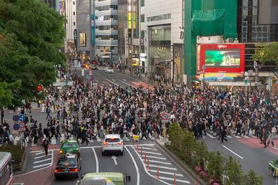 Day 6 - Akihabara and Shibuya Crossing
