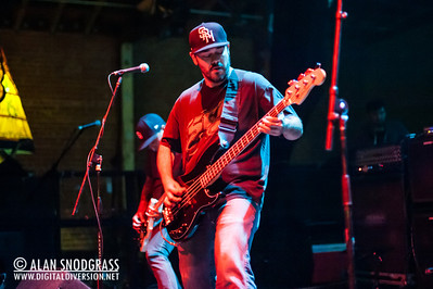 Sprung Monkey 12-1-2013