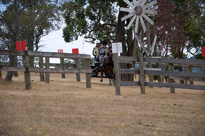 Victorian Carriage Driving Champs - Gallery 1