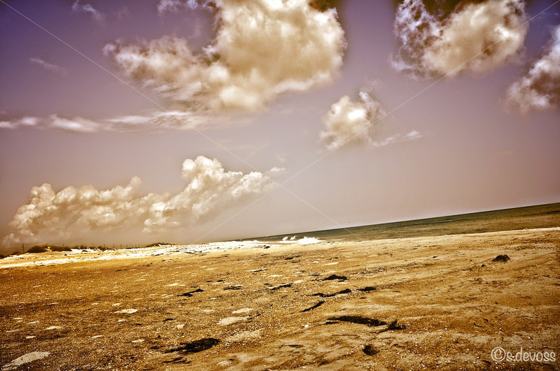 beachNagshead_0336HDR smWm.jpg