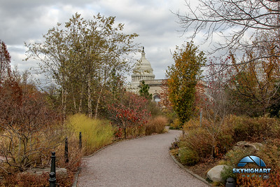 BOTANICAL GARDENS AND US CAPITOL