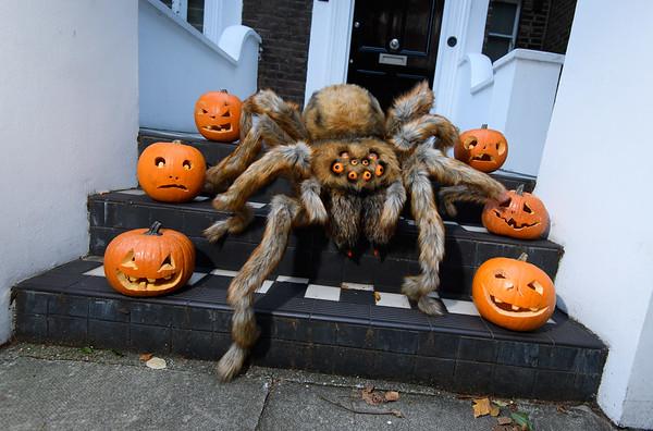 29/10/18 - FANTA'S SUPERSIZED SPIDER SHOCKS LONDONERS
