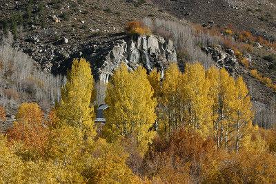 Fall in the Sierras, Oct. 2006