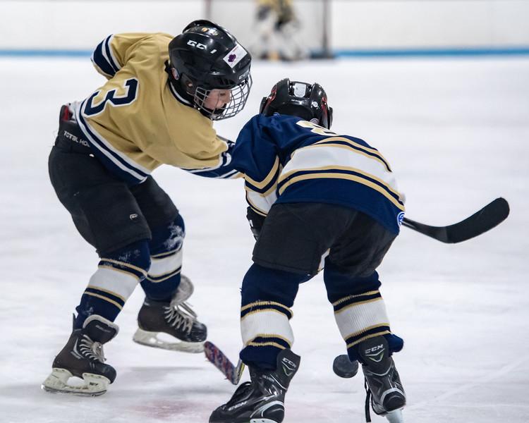 2019-Squirt Hockey-Tournament-226.jpg