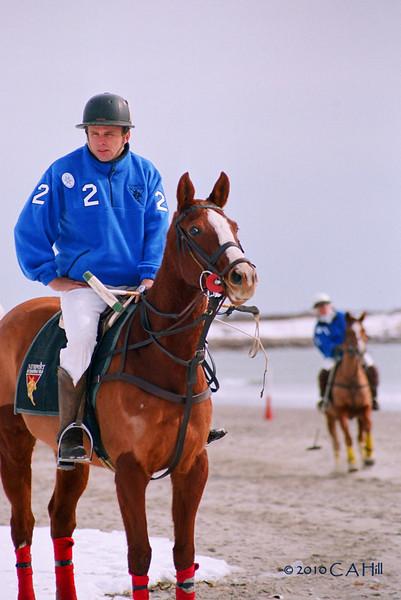 2010 Polo