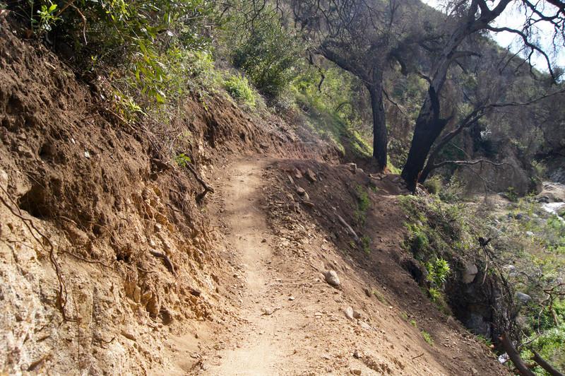 201201291622-El Prieto Trailwork.jpg