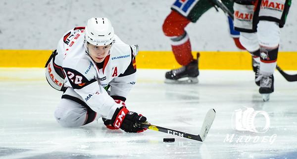 J20SM Åttondelsfinal #2 2019-03-22: Frölunda HC - IF Malmö Redhawks