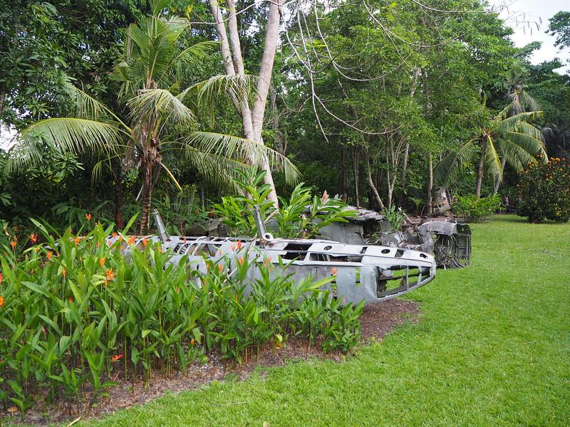 PA270060-wreck-garden.JPG