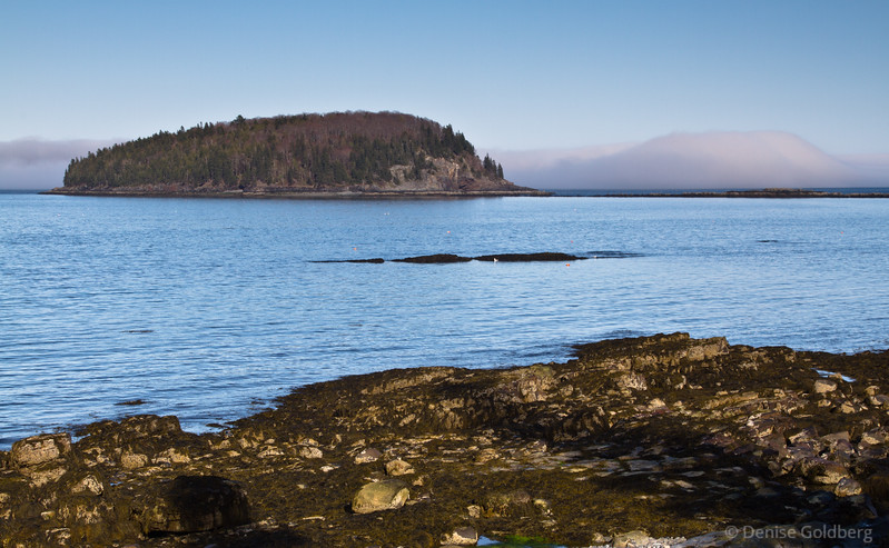 late day light in Bar Harbor