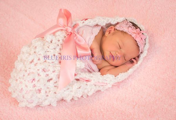 Newborn Babies by Blue Iris Photography