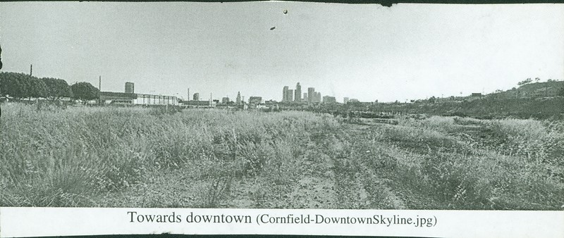 Cornfield Downtown Skyline