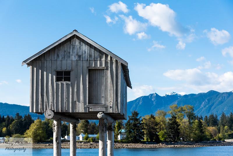 Vancouver-3.jpg